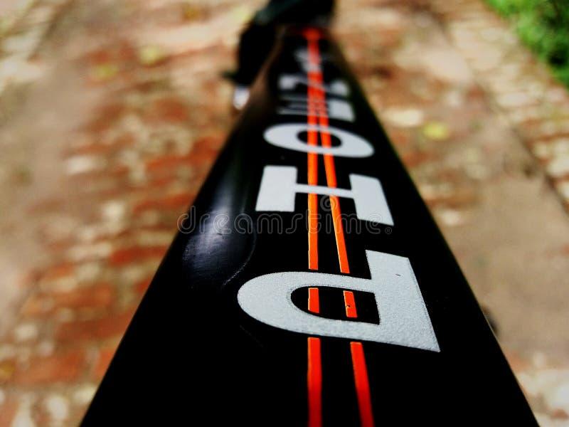 Phoenx fotografia stock
