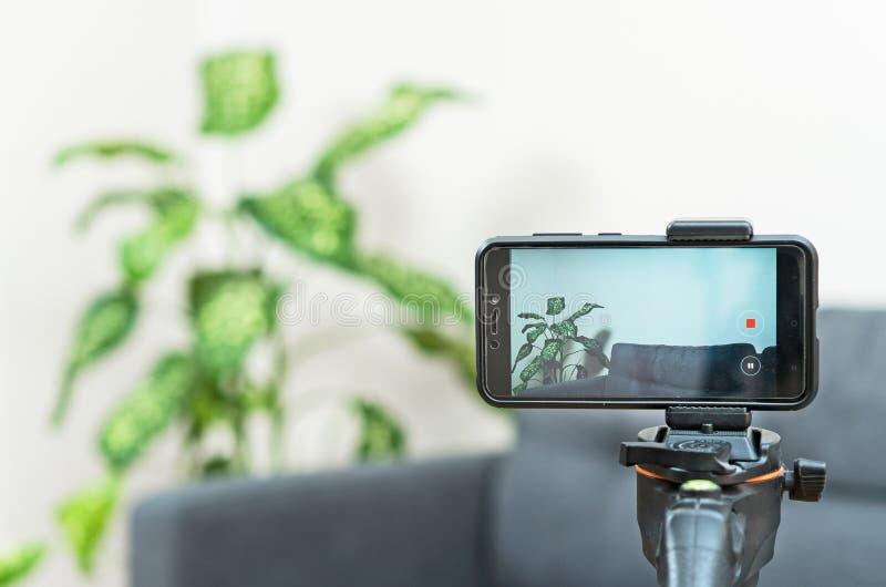 Phone camera on tripod in room. stock photo