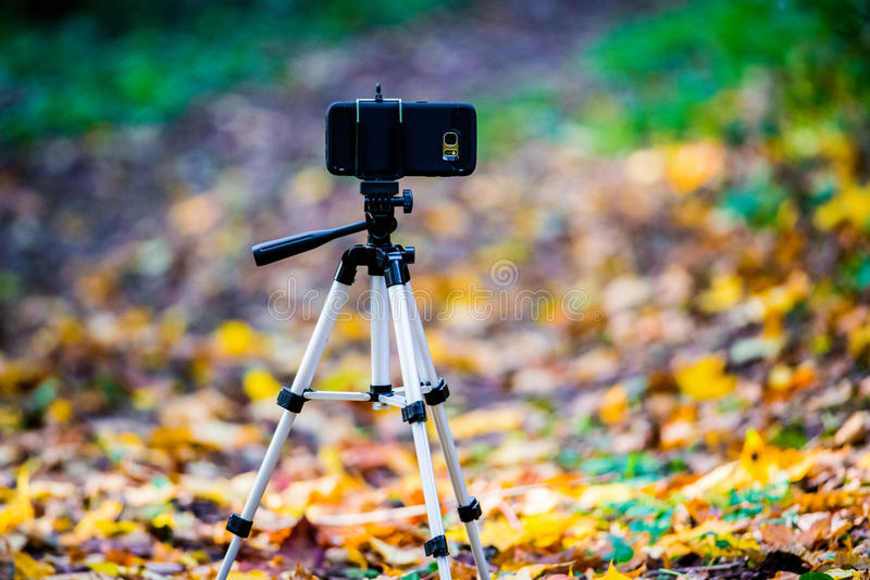 Phone on a tripod in nature stock photography