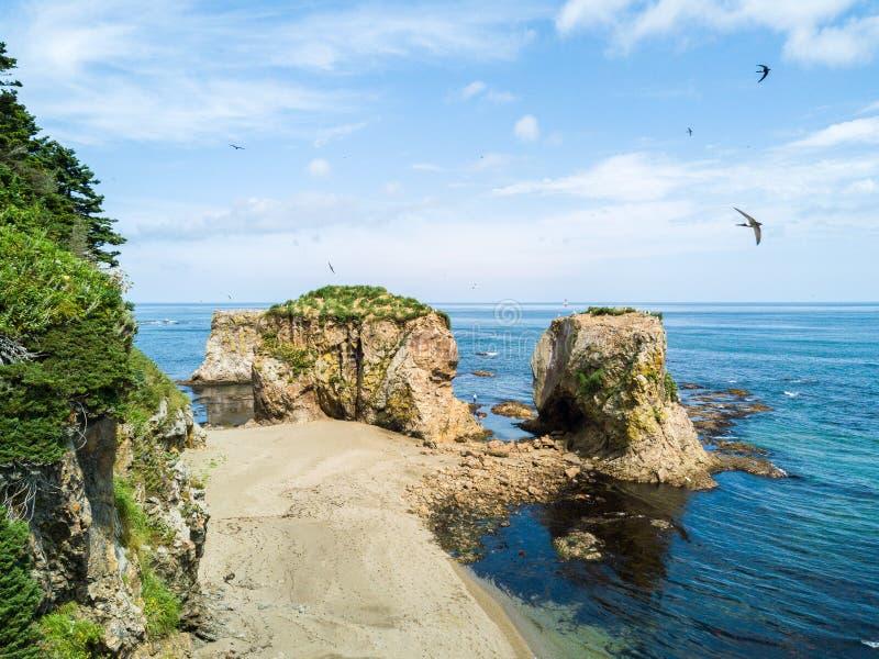 Photo aérienne de bourdon de cap Velikan, île de Sakhaline, Russie Sahalin de Ptichiy de cap tout près Paysage surréaliste de l'A images libres de droits