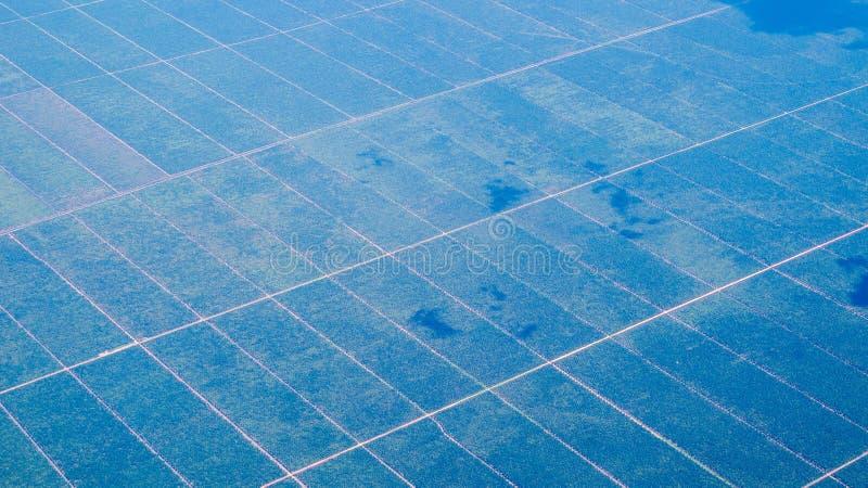 Photo aérienne de plantation d'huile de palme au Bornéo, Indonésie photographie stock