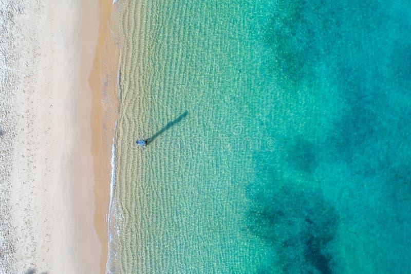 Photo aérienne de Sydney - baie de Watsons de crique de camp images libres de droits