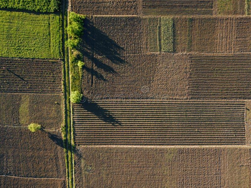 Photo aérienne vue d'agro, d'été de terre verte avec des champs et de jardins image stock