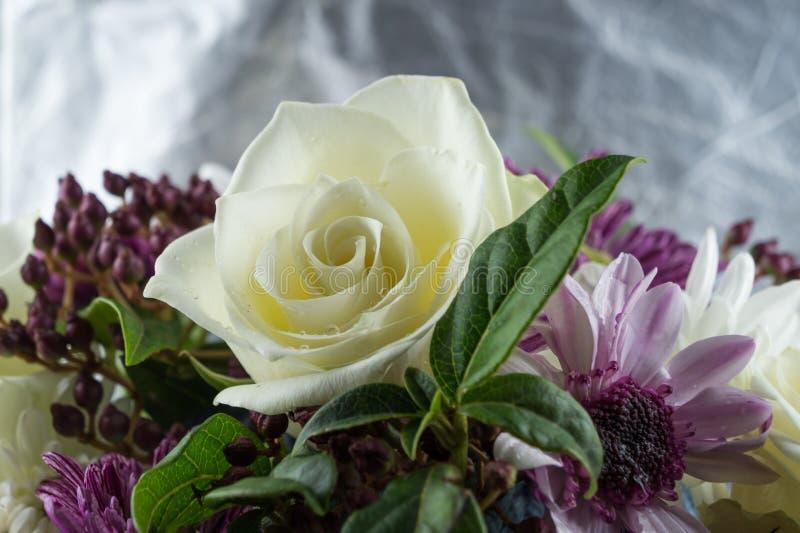 Photo background of white roses, white and purple chrysanthemums. Macro photo flowers stock photos