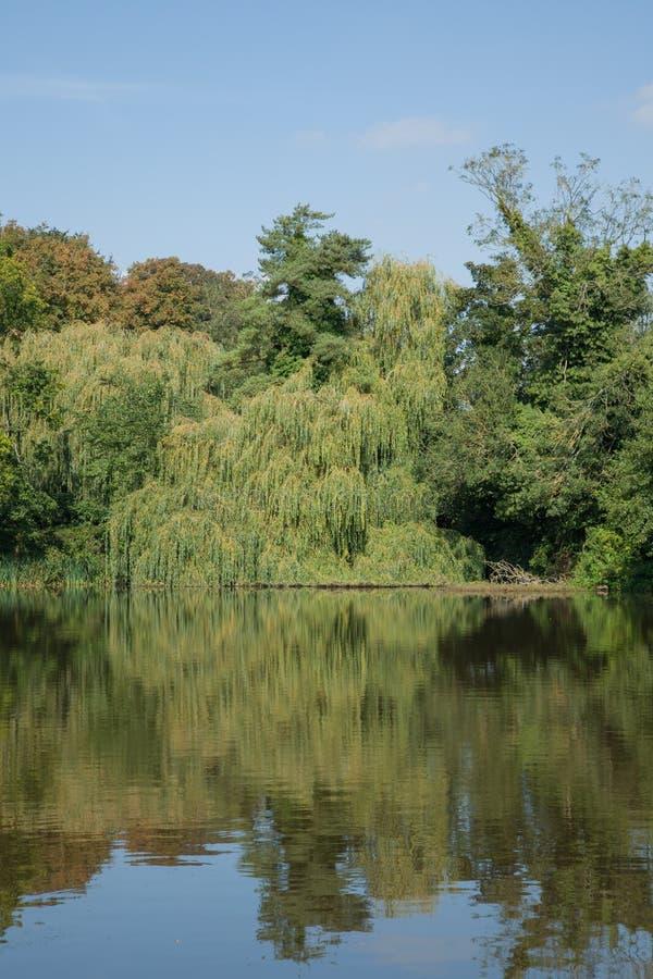 English Village Pond Stock Image Image Of United