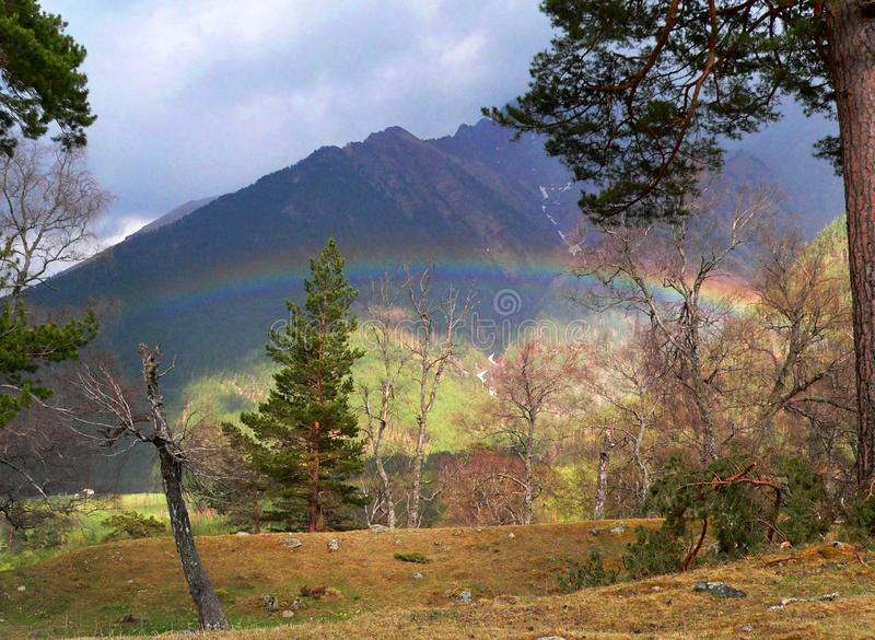 Photo with a beautiful natural landscape with the atmospheric phenomenon of a Rainbow. Photo with a beautiful natural landscape with trees and atmospheric stock photo