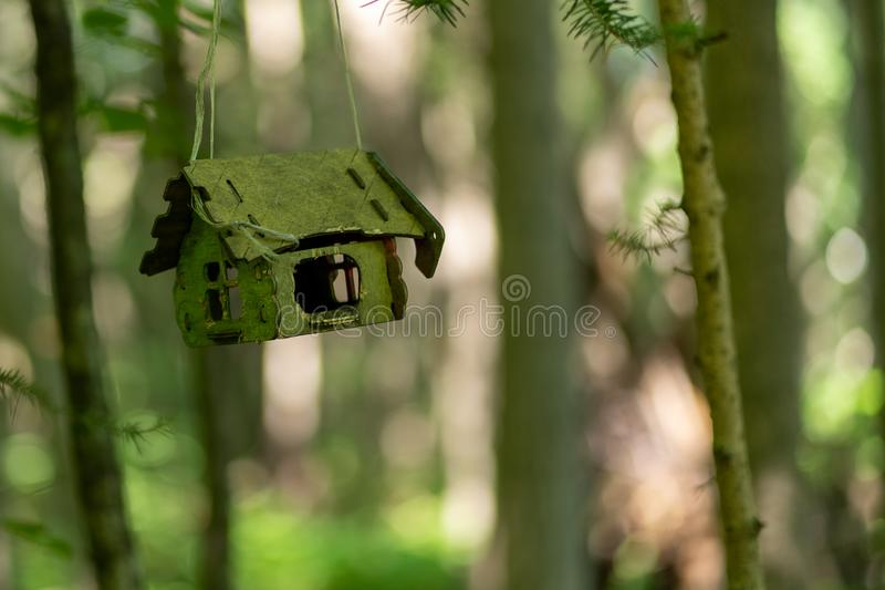 Photo of bird house in cold summer forest royalty free stock image