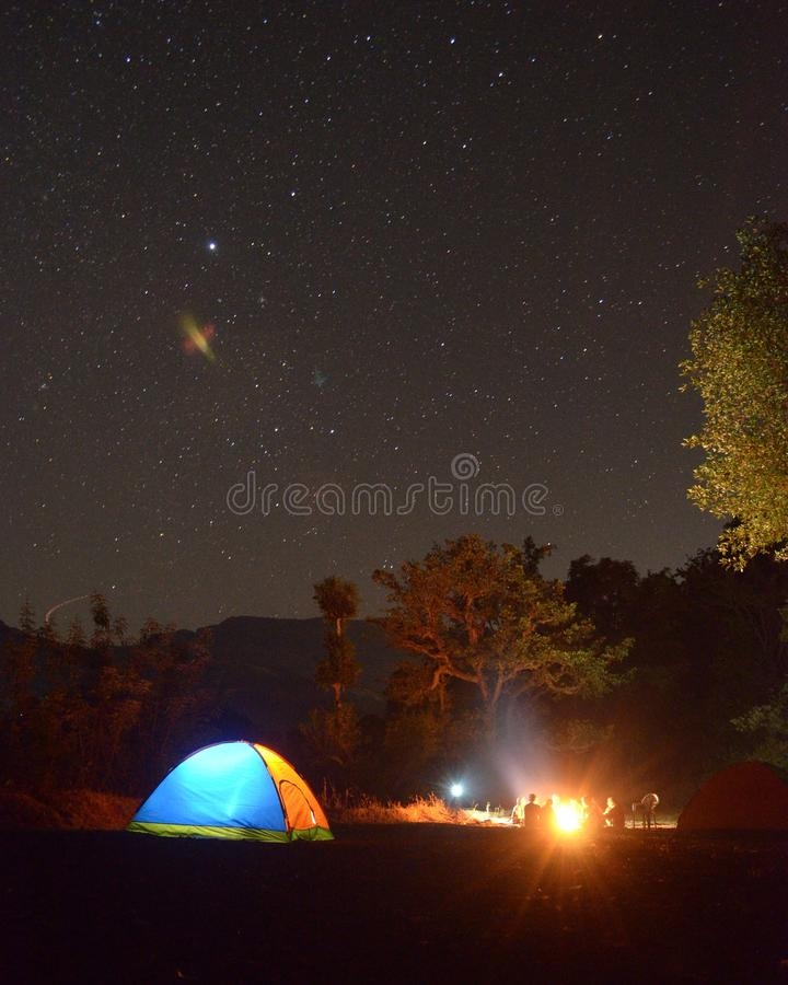 Photo of Blue and Yellow Lighted Dome Tent Surrounded by Plants during Night Time stock photo