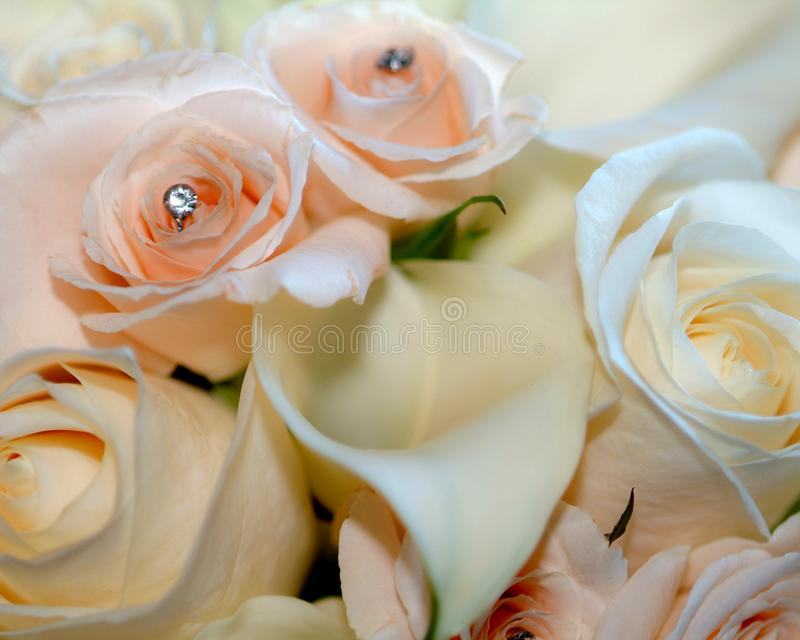 Soft Pink and White Bridal Bouquet with Calla Lily royalty free stock photo