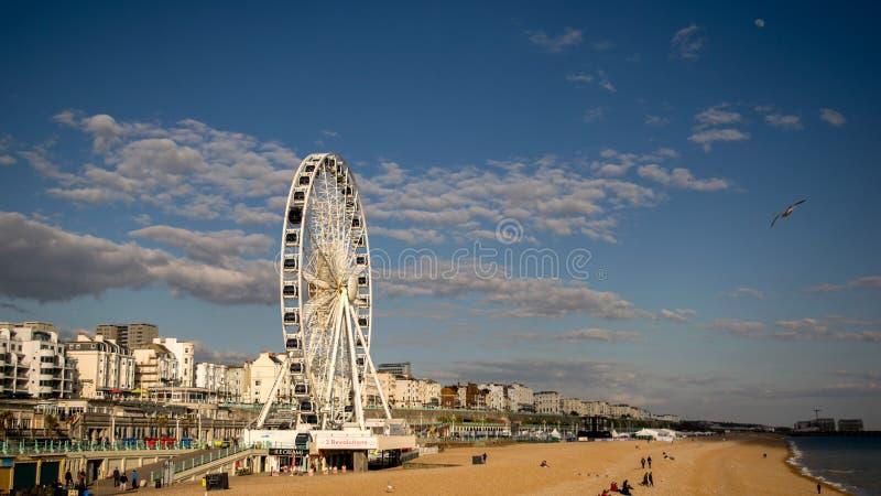 Photo of Brighton Beach Landscape2, Shot from Brighton pier, England royalty free stock photos