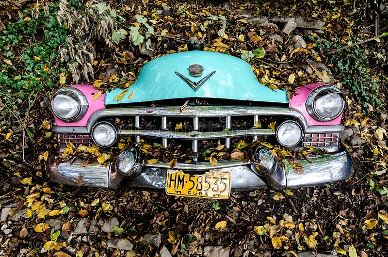 Photo of Car Covered with Leaves stock image