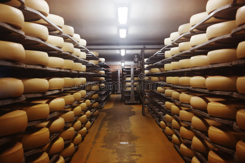 Photo of a cheese factory stock photos