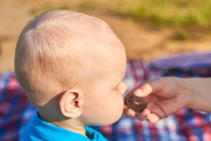 Children`s nape with sparse white hair, close-up. Mom feeds baby pastila. Photo of children`s nape with sparse white hair, close-up. Mom feeds baby pastila stock image