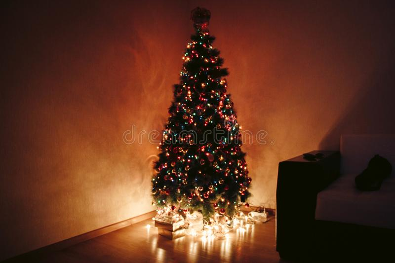 Photo of Christmas Tree During Night stock photos