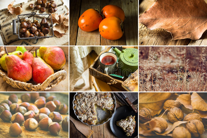Photo collage nine square images, autumn, fall, hazelnuts, walnuts, persimmons, pears, chestnuts, apple pie, fruit tea, book, dry royalty free stock image