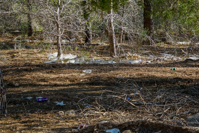 Photo complaint. Crowd of plastic bottles in the pine forest of Coto Cuadros. Murcia, Spain royalty free stock photography
