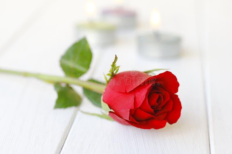 Photo courante : Belles roses rouges sur le plan rapproché de table photo stock