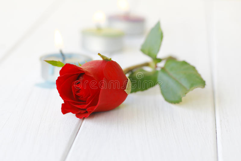 Photo courante : Belles roses rouges sur le plan rapproché de table photo libre de droits
