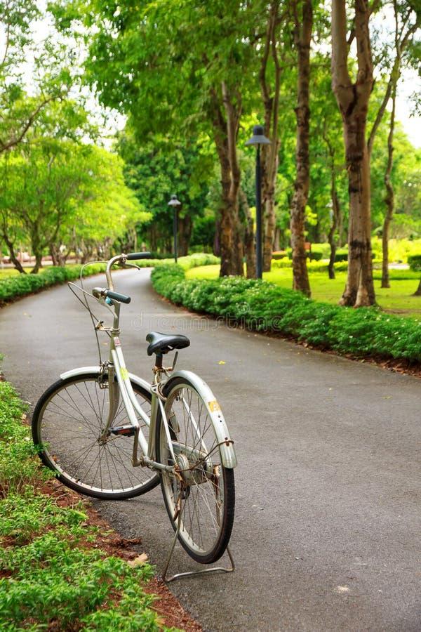 Photo courante - bicyclettes en parc pour le relex photos stock