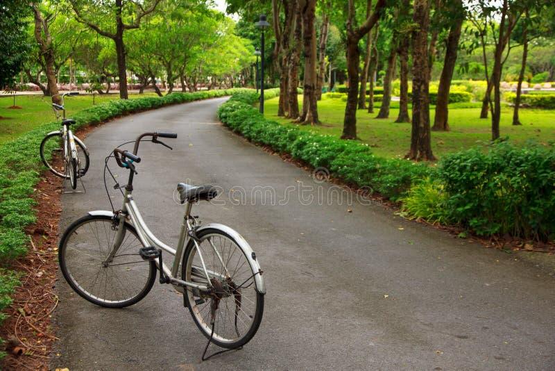 Photo courante - bicyclettes en parc pour le relex photo stock