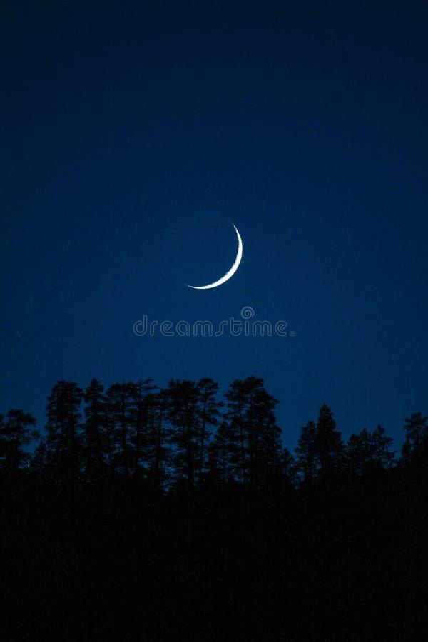 Photo Of Crescent Moon stock image