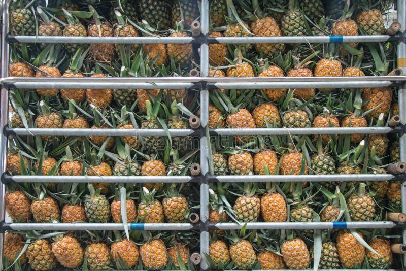Photo d'actions de pomme d'ananas sur le marché de produits frais image stock