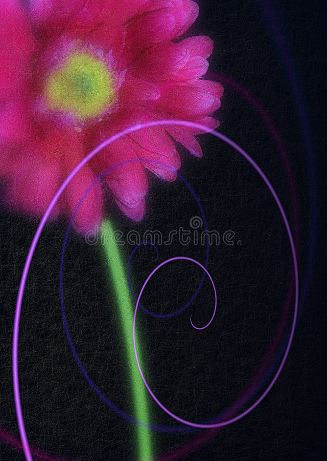 Photo d'art abstrait de marguerite rose de Gerbera photos stock