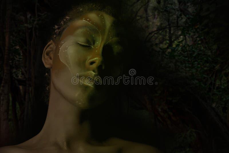 Photo d'art de femme d'Africal avec les peintures ethniques tribales sur son visage photos stock