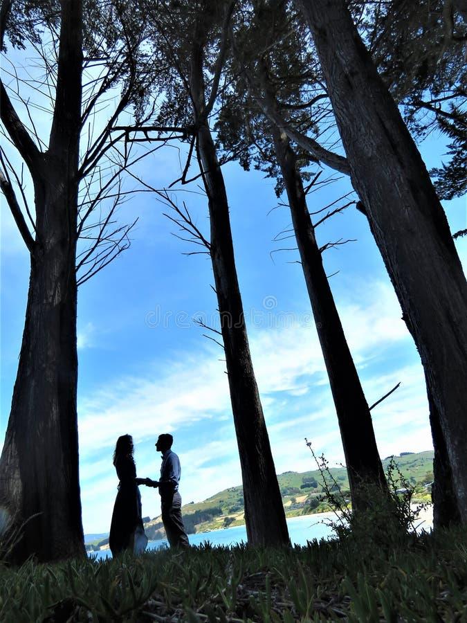 Photo d'un couple dans l'amour/la photographie de épouser pré image stock