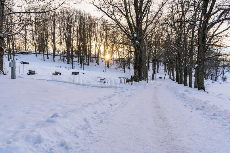Photo d'un passage couvert vide en parc dans l'allée sur Sunny Winter Evening photo libre de droits