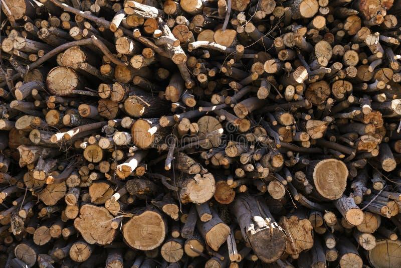 photo d'une pile de fond en bois naturel de rondins image stock