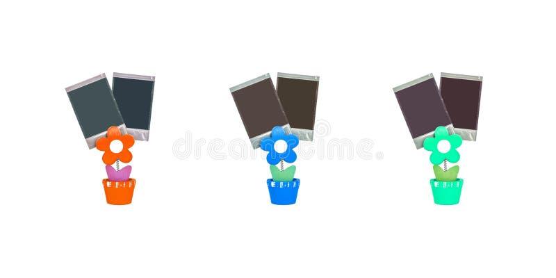 Photo de bride de couleur de plan rapproché en fleur orange, fleur bleue et forme verte de fleur d'isolement sur le fond blanc illustration stock