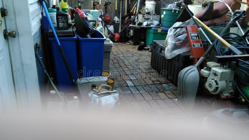 Photo de chat photo libre de droits