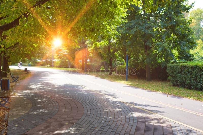 Photo de Footpath dans le parc images libres de droits