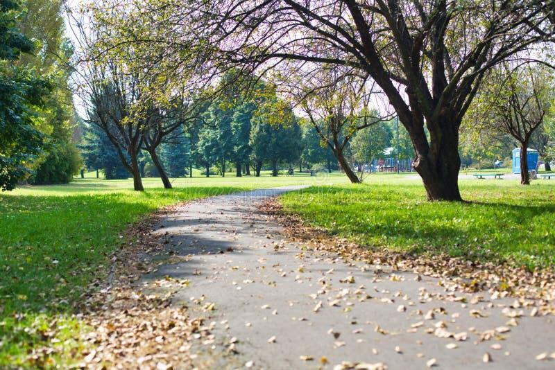 Photo de Footpath dans le parc photos stock