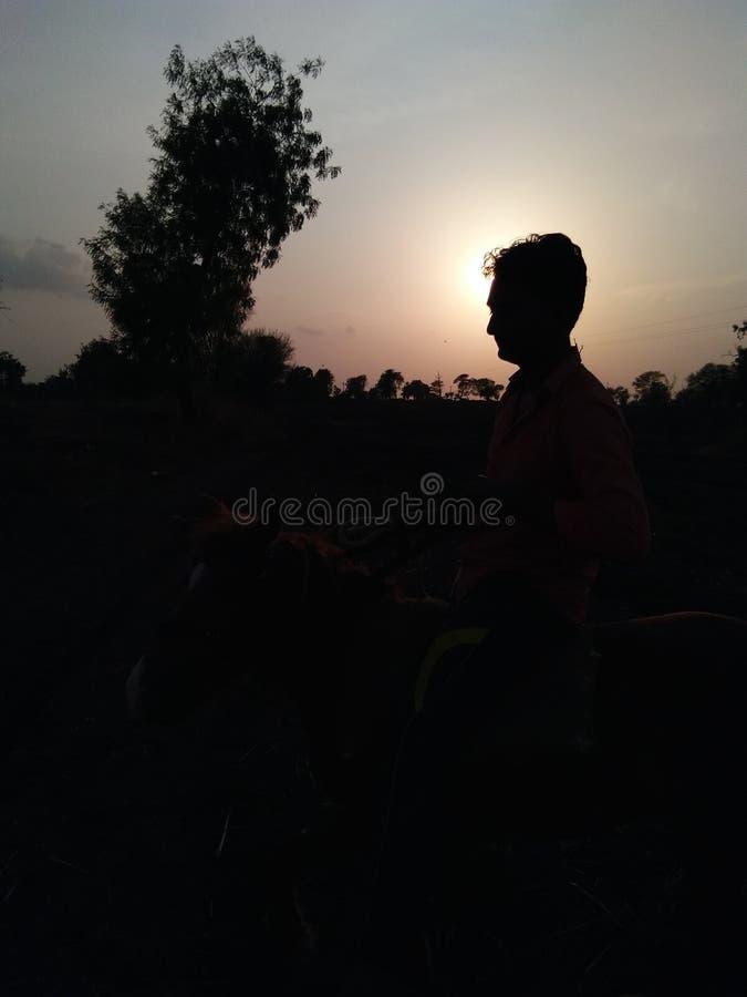 Photo de lumière de Sun image stock