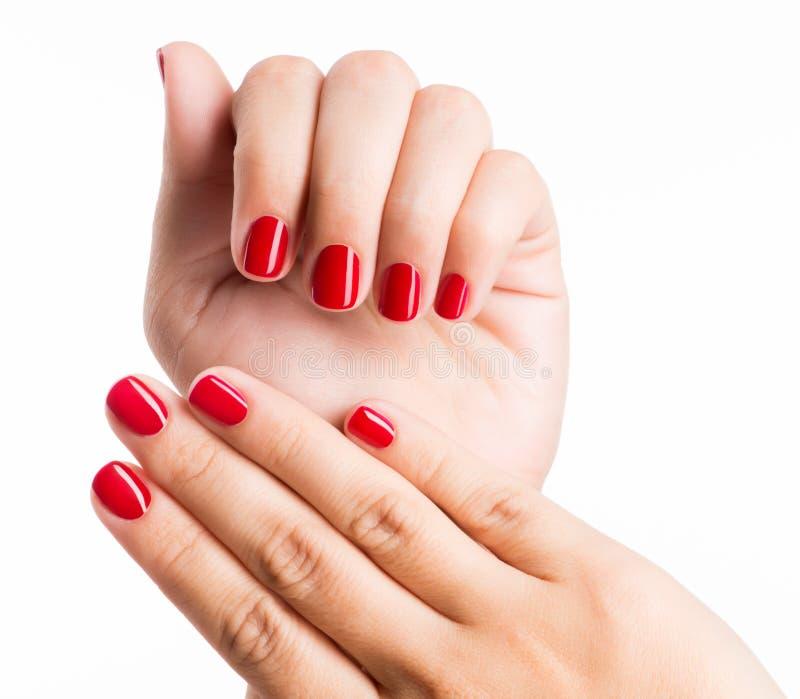 Photo de plan rapproché des mains d'une femelle avec les clous rouges photo stock