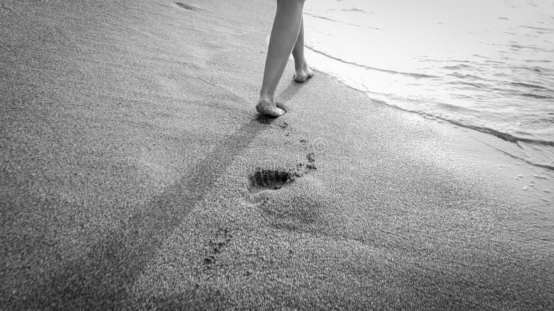 Photo de plan rapproché de la belle jeune femme aux pieds nus marchant dans les vagues chaudes calmes de mer contre le coucher du image libre de droits