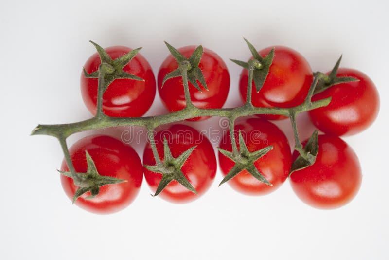 Photo des tomates très fraîches photo libre de droits