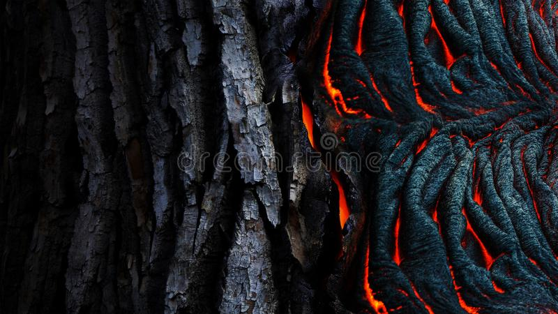 Photo of Dried Lava stock image