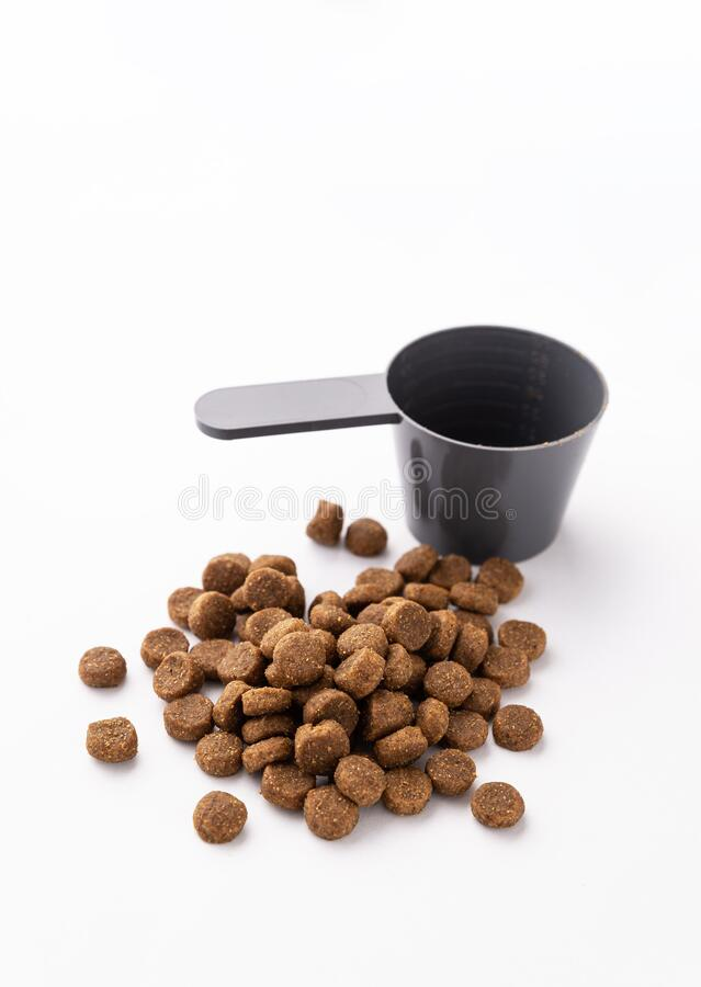 Dry dog food isolated on white background. Photo about Dry dog food isolated on white background royalty free stock images