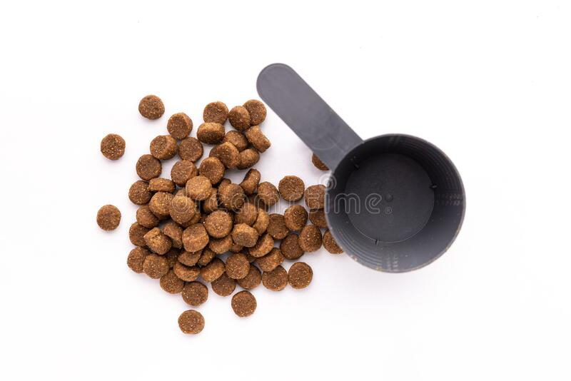Dry dog food isolated on white background. Photo about Dry dog food isolated on white background royalty free stock image