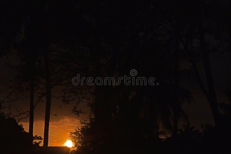 Photo du beau coucher du soleil image stock