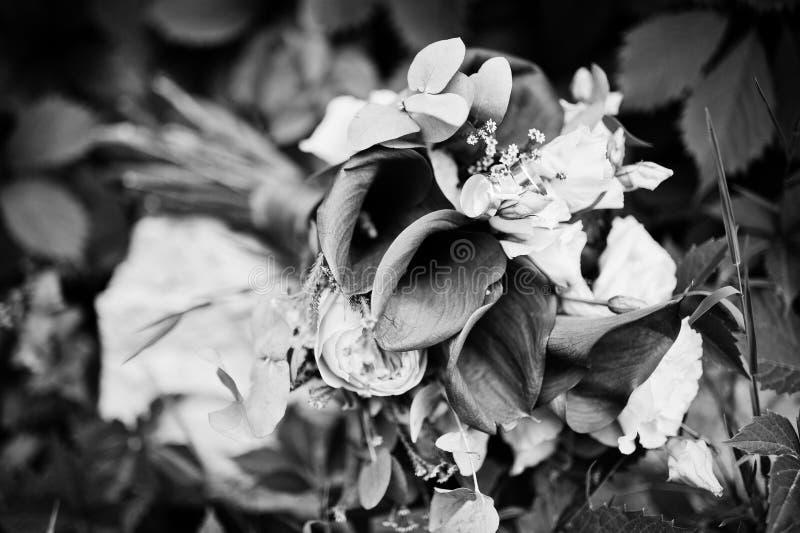 Photo en gros plan d'un bouquet de mariage fait à partir du lilie pourpre de calla image libre de droits