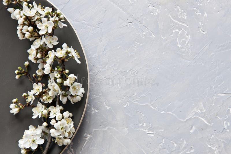 Photo en gros plan des fleurs de floraison de beau blanc du cerisier photos libres de droits