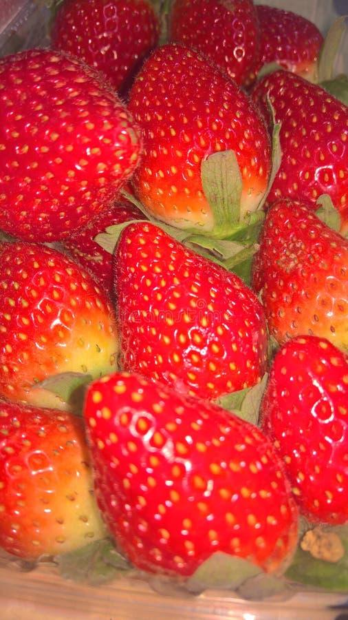 Photo en gros plan des fraises images stock