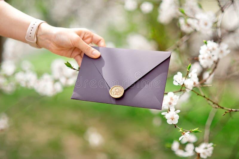 Photo en gros plan des mains femelles tenant l'enveloppe pourpre d'invitation avec le joint de cire, certificat-prime, épousant  photo stock
