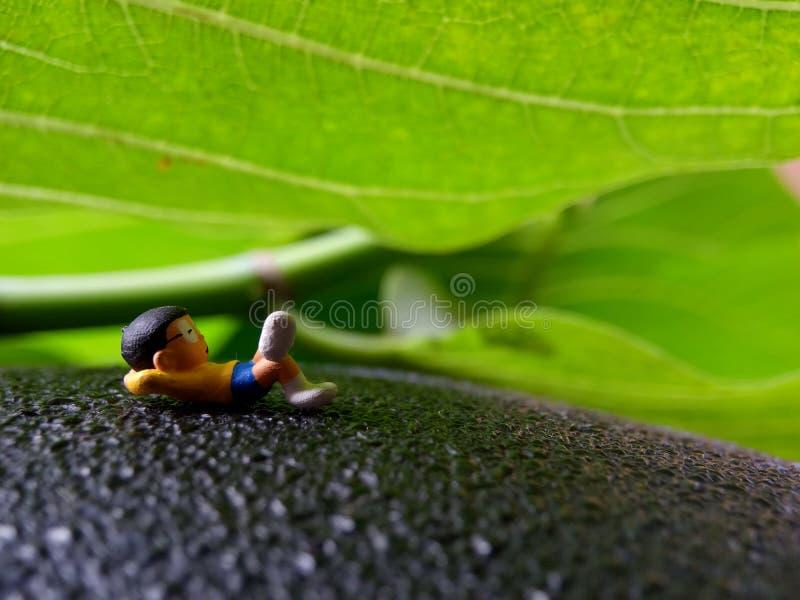 Photo, Eye Level View 07 July 2019, Sleeping Dreaming Nobi Nobita beyond Green Fresh Leaf, Garden, Jakarta, Indonesia, Studio Shot. Eye Level View 07 July 2019 stock images