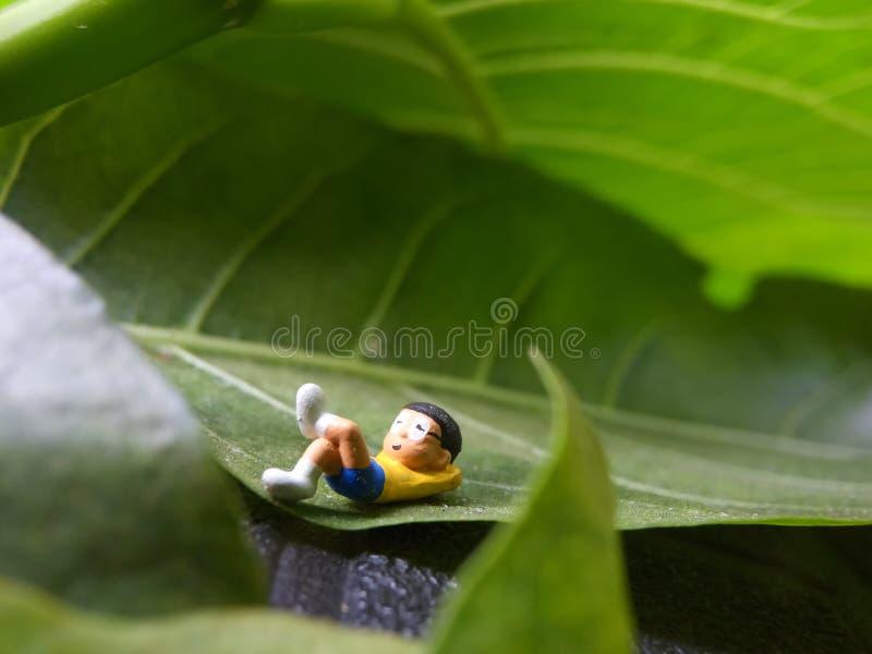 Photo, Eye Level View 07 July 2019, Sleeping Dreaming Nobi Nobita beyond Green Fresh Leaf, Garden, Jakarta, Indonesia, Studio Shot. Eye Level View 07 July 2019 stock photos