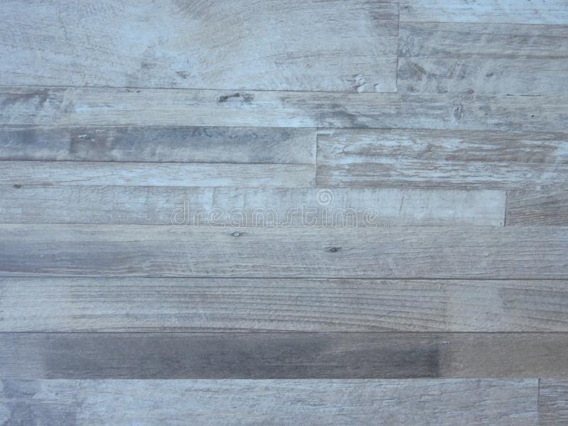 Photo of Fine bleached oak tree wood texture pattern background. Exquisite Design Grey White Oak Wood Grain. royalty free stock photo